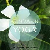 Kundalini Yoga, Vol. 1 (Relax & Meditation Music) by Various Artists