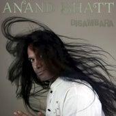 Digambara by Anand Bhatt