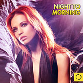 Night to Morning by Various Artists