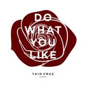 Do What You Like de Taio Cruz