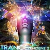 Trance Zendenz, Vol. 2 (A Progressive and Melodic Trance Sensation) by Various Artists