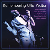 Remembering Little Walter de Various Artists