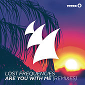 Are You With Me (Remixes Part 2) de Lost Frequencies