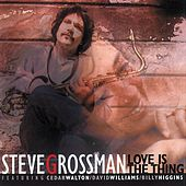 Love Is the Thing by Steve Grossman