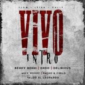 Vivo (feat. Endo, Delirious, Pacho Y Cirilo, Miky Woodz & Valdo El Leopardo) von Benny Benni