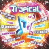 Estallido Tropical, Vol. 2 de Various Artists