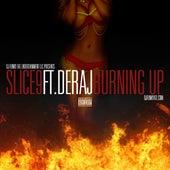 Burning Up (feat. Deraj) - Single by Slice 9