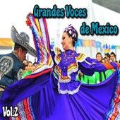 Grandes Voces de México, Vol. 2 by Various Artists