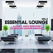 Essential Lounge, Vol. 2 (A Funky Juice Selection of Smooth Lounge-Grooves!) de Various Artists