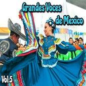Grandes Voces de México, Vol. 5 by Various Artists