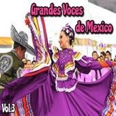 Grandes Voces de México, Vol. 3 by Various Artists
