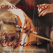 Grandes Clásicos by Various Artists