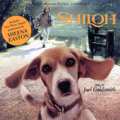 Shiloh de Joel Goldsmith