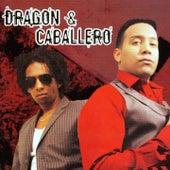 Dragón & Caballero de Dragón y Caballero
