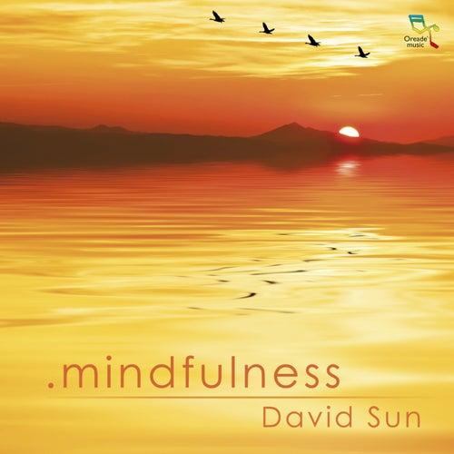 Mindfulness by David Sun