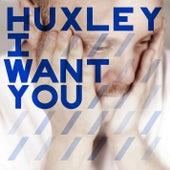 I Want You (Deetron, Shenoda & Komon remixes) by Huxley