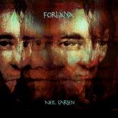 Forlana by Neil Larsen