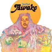 Awake by Jackal