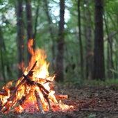 Algonquin Park Camp Fire van Sound Oasis