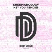 Hey You (Remixes) de Shermanology