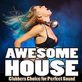 Awesome House, Vol. 1 - Clubbers Choice for Perfect Sound de Various Artists