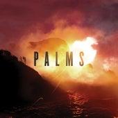 Palms by Palms