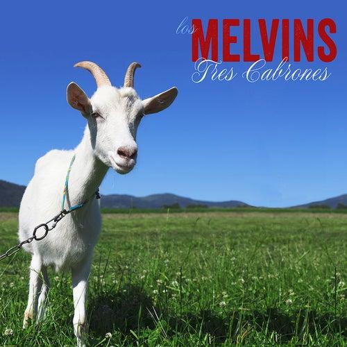 Tres Cabrones by Melvins
