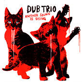 Another Sound Is Dying by Dub Trio