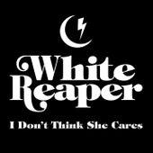 I Don't Think She Cares di White Reaper