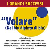I Grandi Successi... Volare by Various Artists
