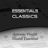 Vivaldi Essential by Various Artists