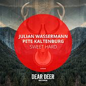 Sweet Hard - Single di Julian Wassermann