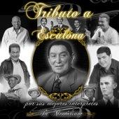 Tributo a Escalona por Sus Mejores Intérpretes de Various Artists