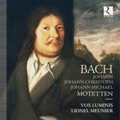Bach: Motetten de Vox Luminis