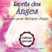 Esprit des anges: musique pour thérapie d'ange: édition spéciale de Chris Conway