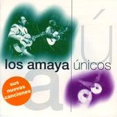 Únicos de Los Amaya