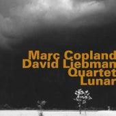 Marc Coplan - David Liebman Quartet: Lunar di David Liebman