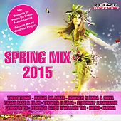 Spring Mix 2015 - EP by Various Artists
