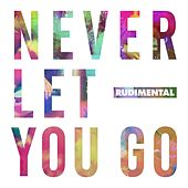 Never Let You Go (feat. Foy Vance) di Rudimental