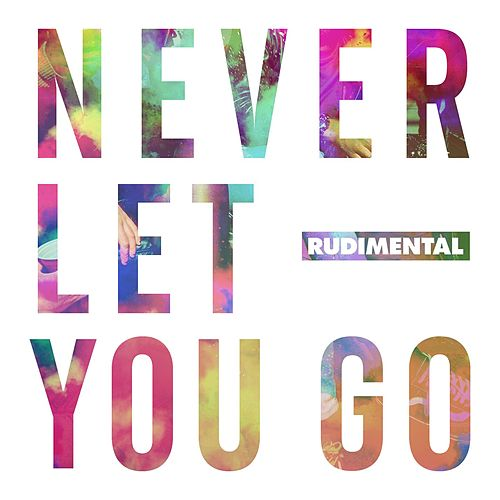 Never Let You Go (feat. Foy Vance) von Rudimental