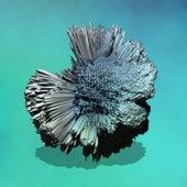Deep Sunk - Single de Andrea Balency