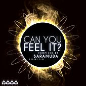 Can You Feel It?, Vol. 5 - Compiled By Baramuda von Various Artists