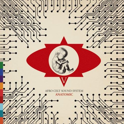 Anatomic by The Afro Celt Sound System