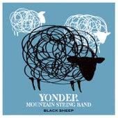 Black Sheep by Yonder Mountain String Band