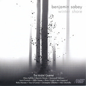 Benjamin Sabey: Winter Shore by Various Artists