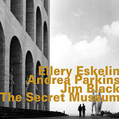 The Secret Museum by Ellery Eskelin