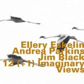 12(+1) Imaginary Views von Ellery Eskelin