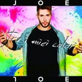 Tra I Miei Colori de Joe