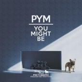 You Might Be de PYM