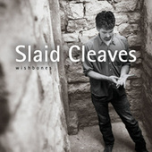 Wishbones by Slaid Cleaves